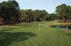 Palmetto Golf Club Aiken Sc Homes For Sale