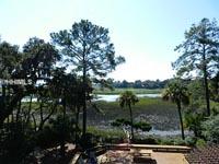 Moss Creek foreclosures