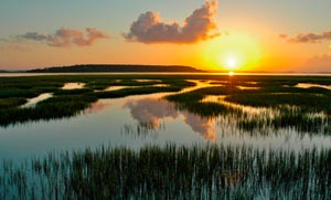 Spring Island SC Homes for Sale