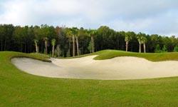 Sun City Hilton Head Golf Course Homes for Sale