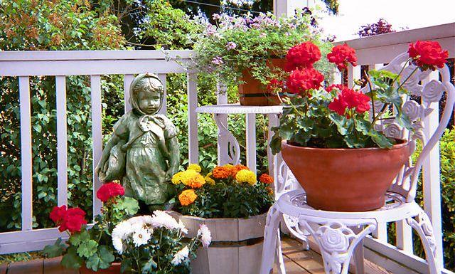 flowerforintantcurbappeal